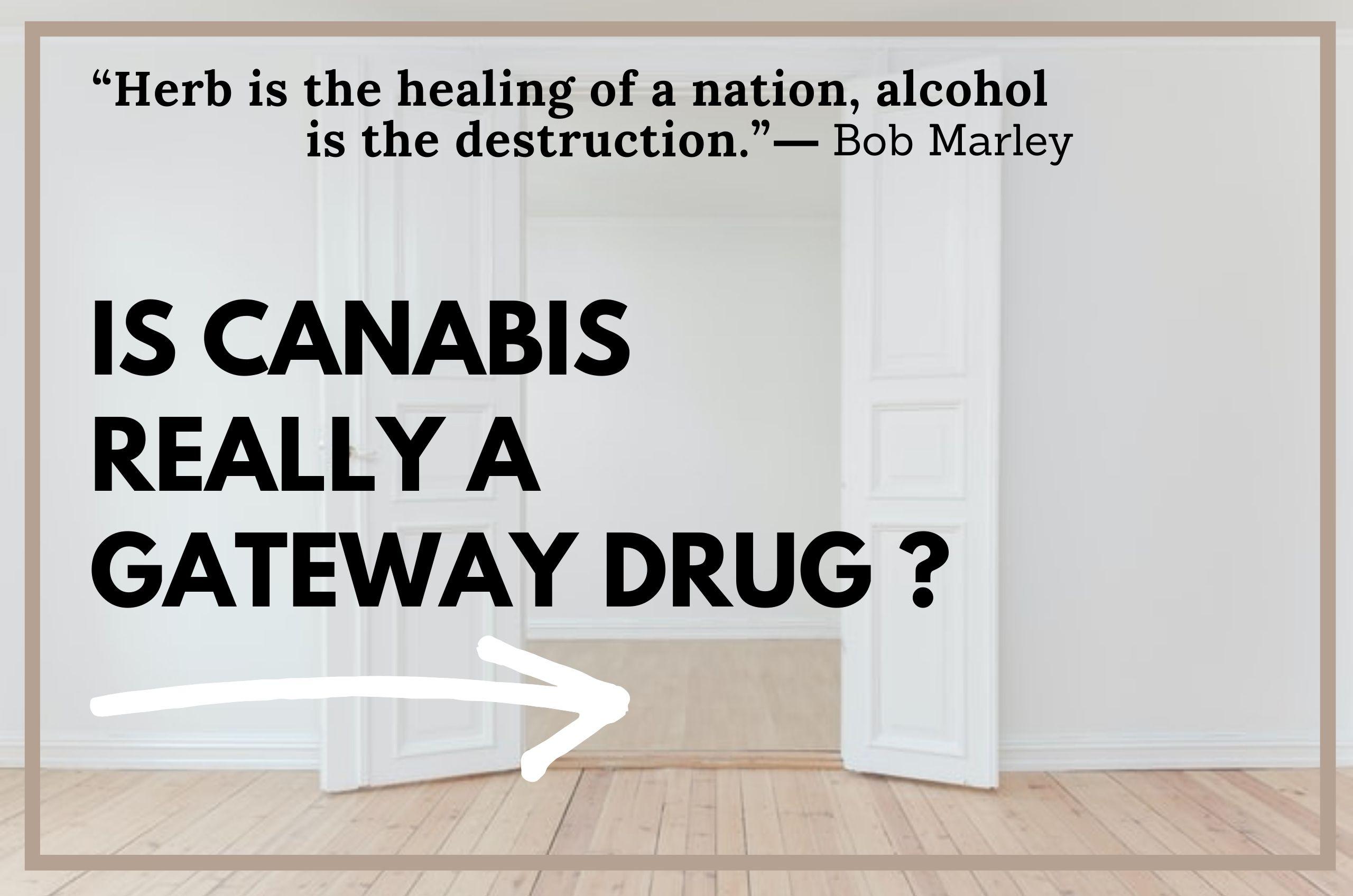 What's the Reality of Marijuana's Gateway Drug Theory?