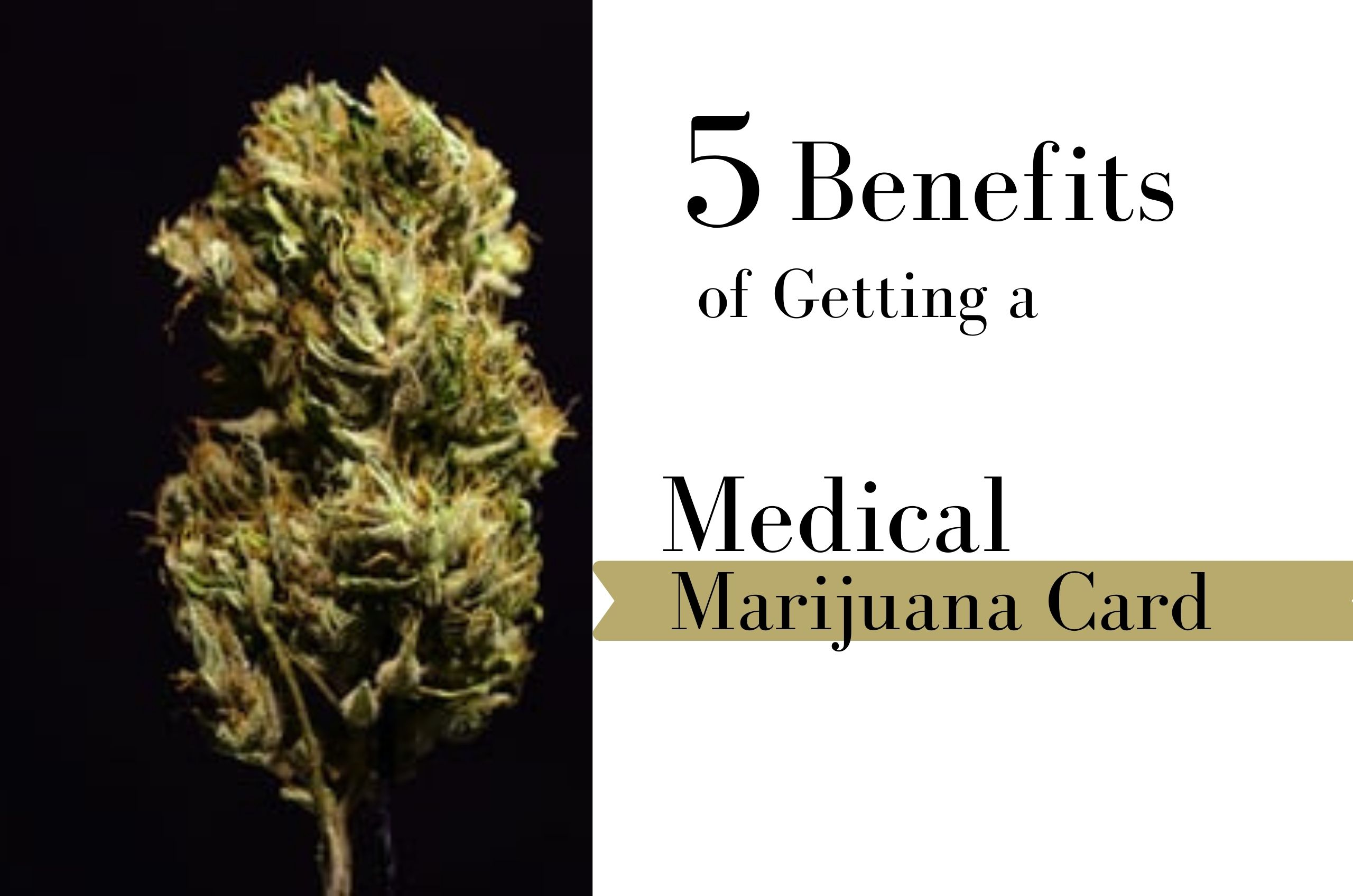 5 Reasons Why You Should Get an MMJ Card
