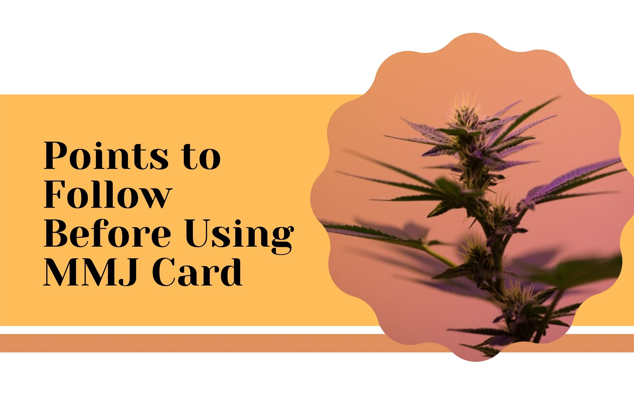 Points to Remember Before Using an MMJ Card