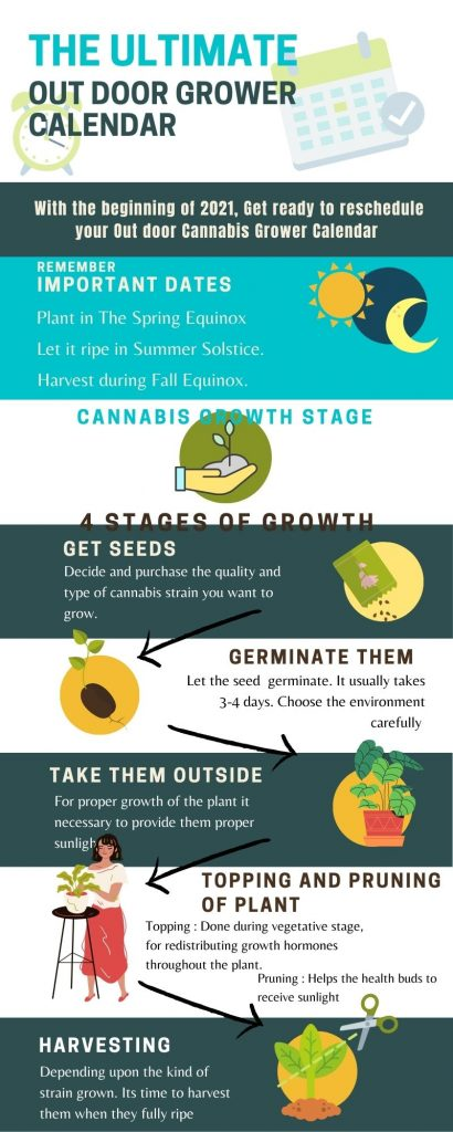 an infographic showing the out door cannabis calendar in visual format